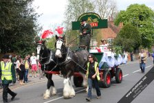 The Carnival Queen on John Medhurst's dray pulled by his magnificent dray horses